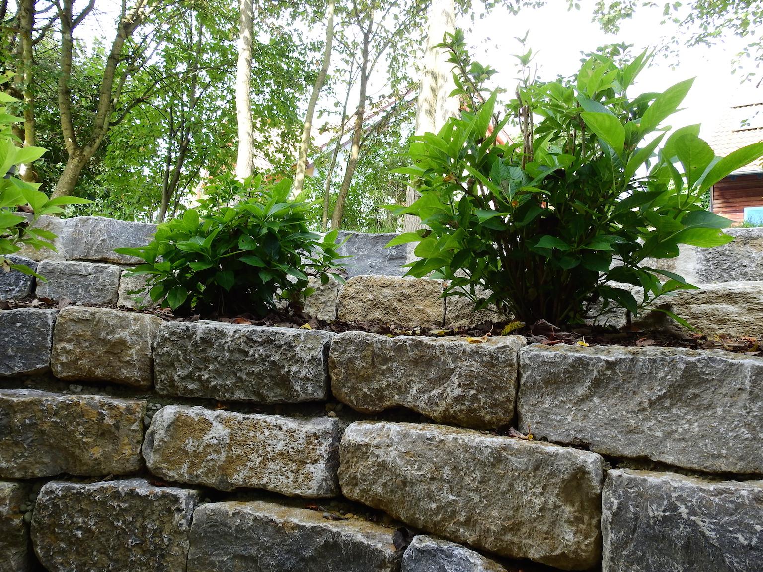 Mauern Bodensee Galabau